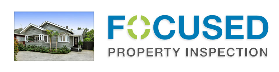 Focused Property Inspection